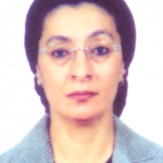 Loubna A. Youssef